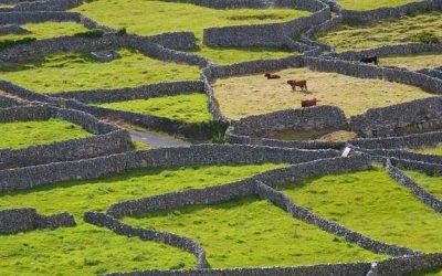 Irlandia ciekawostki – część 4