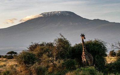 Kenia ciekawostki – część 3