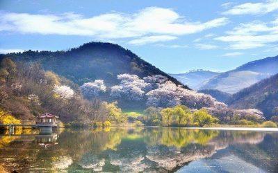 Korea Południowa ciekawostki – część 3