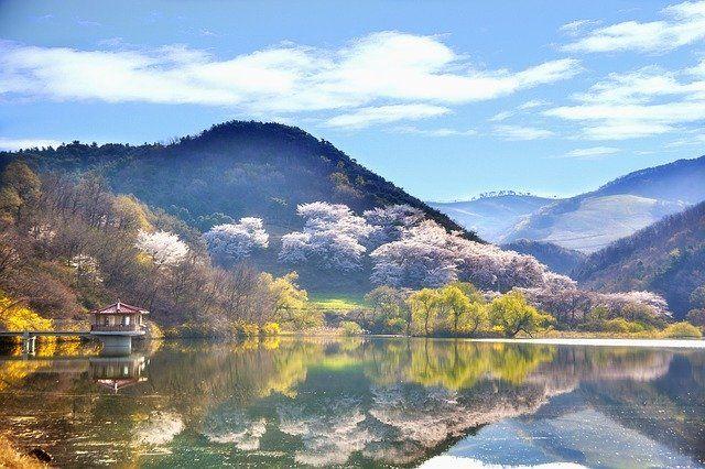 Korea Południowa grafika3