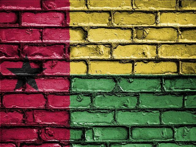 Gwinea Bissau grafika2