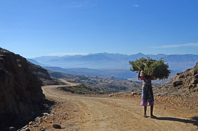 Lesotho grafika1