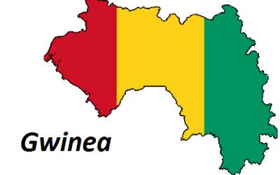 Gwinea geografia