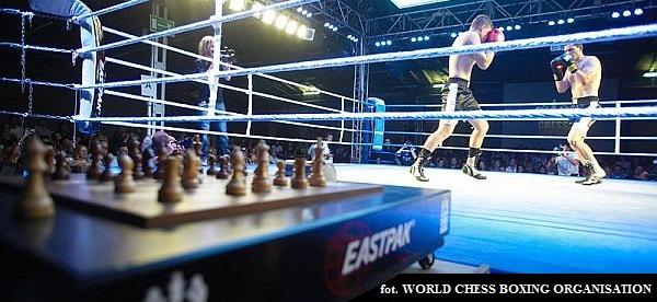 szachowy boks grafika