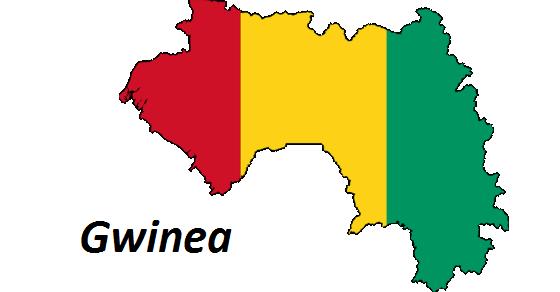 Gwinea zdjęcie