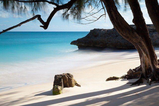 Barbados grafika3
