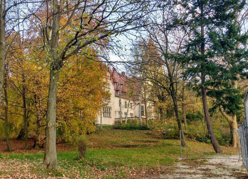 Pałac w Lubniewicach