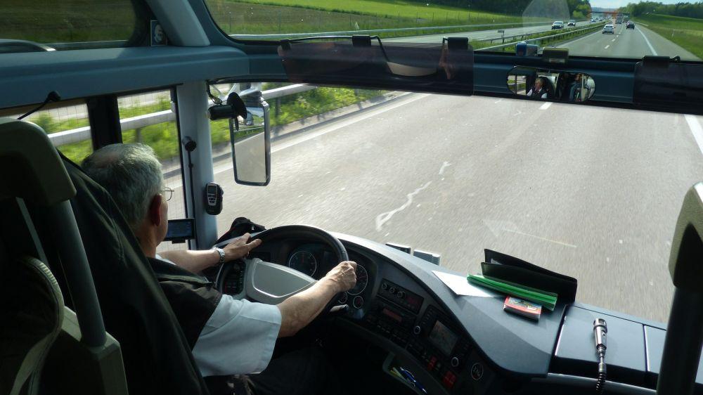 kierowca grafika