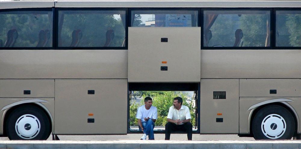 autobus grafika