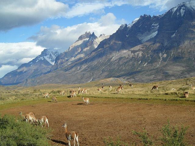 Chile ciekawostki – część 4