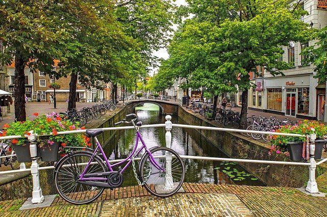 Holandia grafika4