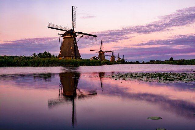 Holandia grafika5