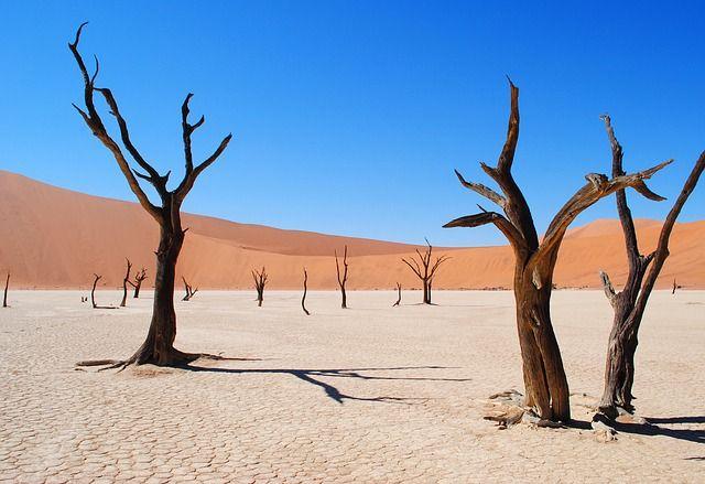 Namibia grafika2