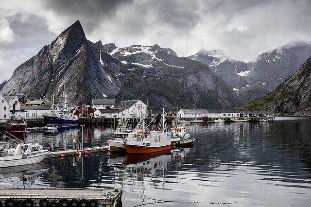 Norwegia grafika3