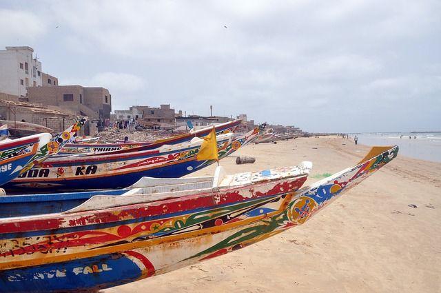 Senegal grafika2