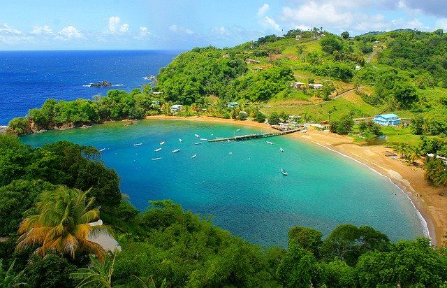 Trynidad i Tobago grafika