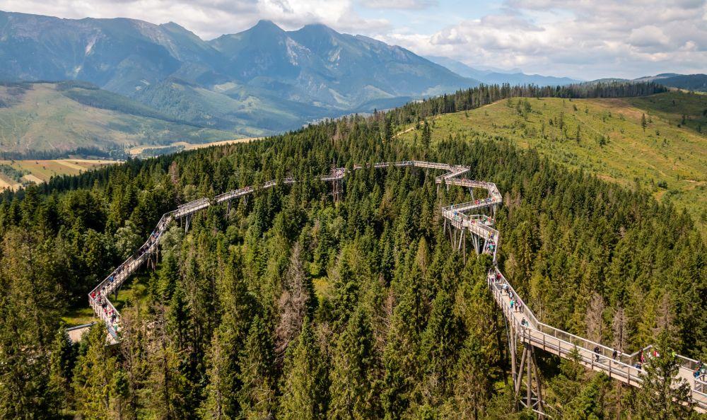 Tatry z nowej perspektywy – poznaj uroki spaceru w koronach drzew