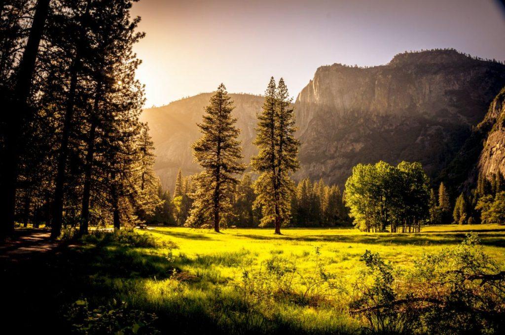łąka w górach o zachodzie słońca