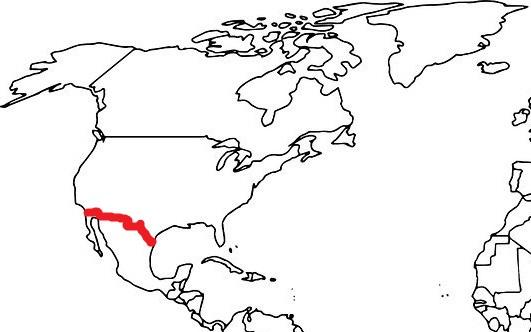 Granica Stanów Zjednoczonych z Meksykiem grafika